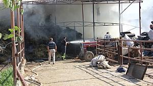Salihli de besi çiftliğinde çıkan yangın korkuttu.