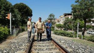 Tren yolundaki 73 kaplumbağa kurtarıldı