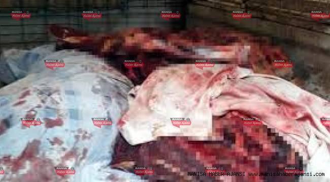 Manisa'da yaklaşık 800 kilogram at eti ele geçirildi