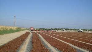 Manisa'dan 501 milyon dolarlık kuru üzüm ihracatı