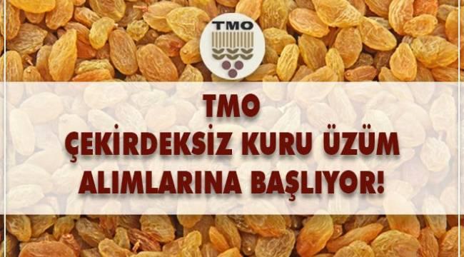 TMO 10 Eylül'de üzüm alımına başlayacak