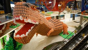 Animal Balloon World'ün Dev Dinozoru Guinness rekoru kırdı