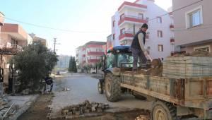 Turgutlu'daki Ağaçlar Sağlıkla Büyüyor