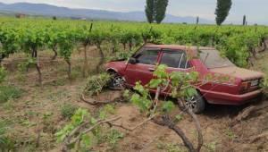 Manisa'da yola çıkan köpeğe çarpmamak için manevra yapan otomobil üzüm bağına devrildi