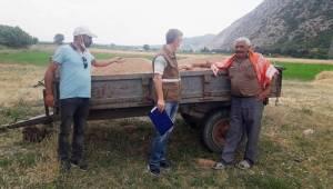 Buğday arpa hasat sezonu başladı