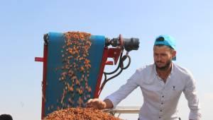 Üzüm üreticisinin beklediği fiyat açıklanmadı